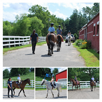 UConn Summer Horse Riding Lessons-Sign Up Now!