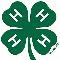 New England 4-H Horse Show