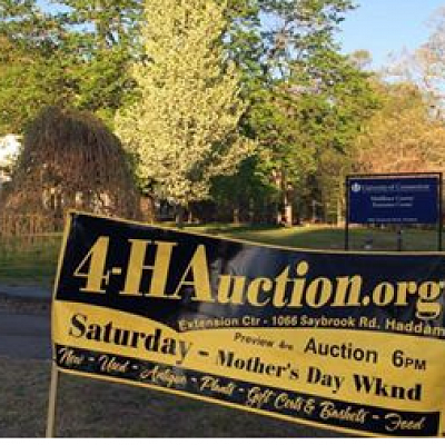 Middlesex County 4-H Auction