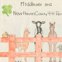 Middlesex And New Haven County 4-H Fair