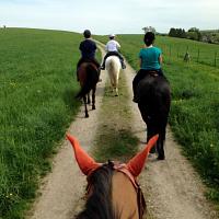UConn Summer Riding Registration Open