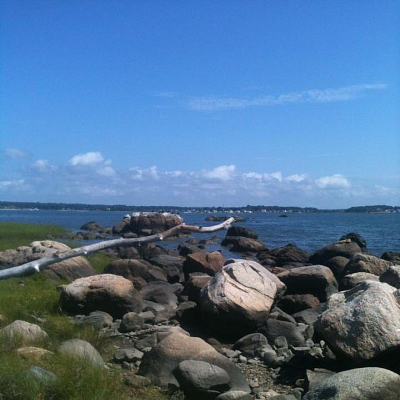 Hammonasset Shoreline Ecosystems