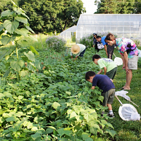 Bug Week Event at Spring Valley Student Farm