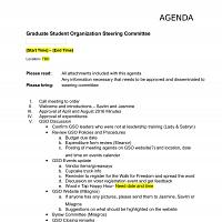 GSO Steering Meeting
