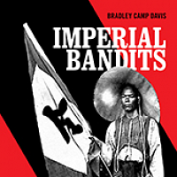 Outlaws & Rebels in 19th Century Vietnam-China Borderlands