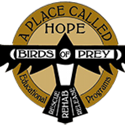 A Place Called Hope - Birds of Prey