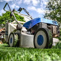 Five Ways to Cover Ground & Give the Lawnmower a Rest