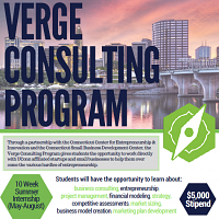 2018 Verge Consulting Program Application