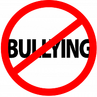 CLIR-Weight-Based Bullying in Youth