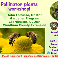 Pollinator Plants Workshop