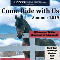 Come Ride with Us: UConn Summer Horseback Riding Registration Open
