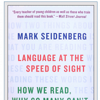 Mark Seidenberg Book Presentation