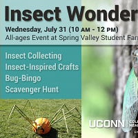 Insect Wonders at the Farm