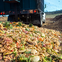 Food Waste Policy: Using Systems Change to Stop Squandering One of Our Greatest Resources