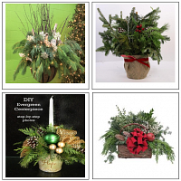 S19/24   Holiday Evergreen Workshop