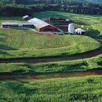 Enhancing Profitability for Connecticut Farms