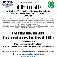4-H In 40: Parliamentary Procedures In Real Life