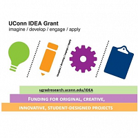 UConn IDEA Grant Virtual Information Session